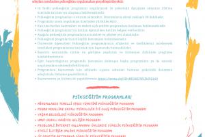 Sinop Üniversitesi Rehberlik ve Psikolojik Danışmanlık Anabilim Dalı Psikoeğitim Uygulamaları